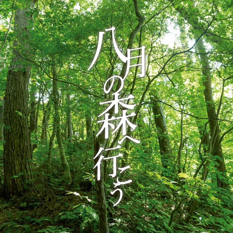 小説『八月の森へ行こう』